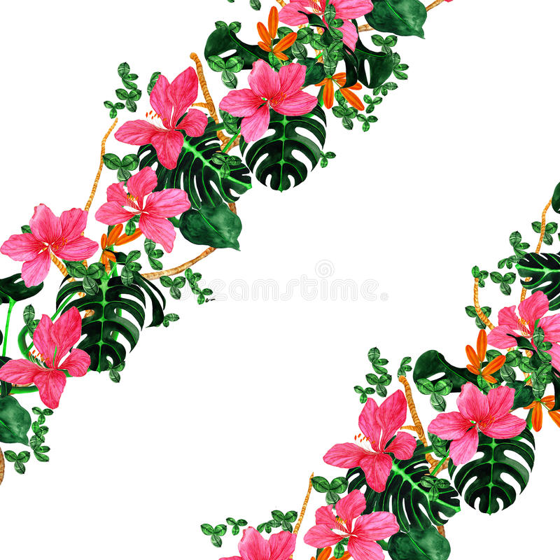 Rosette florale photos stock