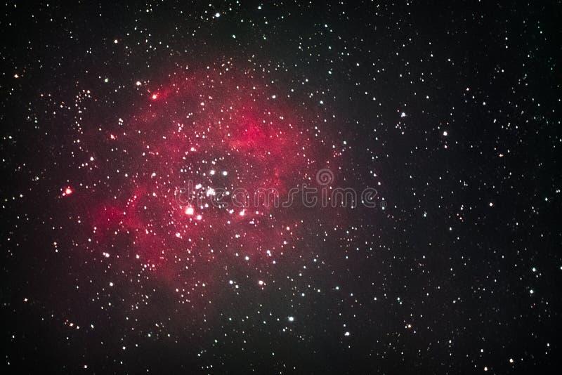 Rosette Nebula royaltyfri bild