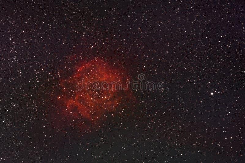 Rosette Nebula royaltyfria foton
