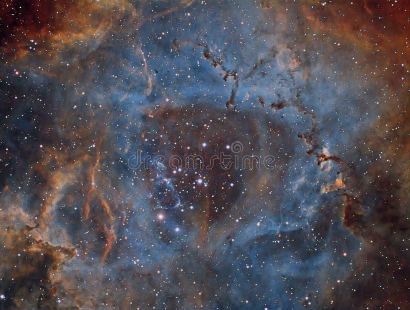 Rosette Nebula i Narrowband arkivbilder