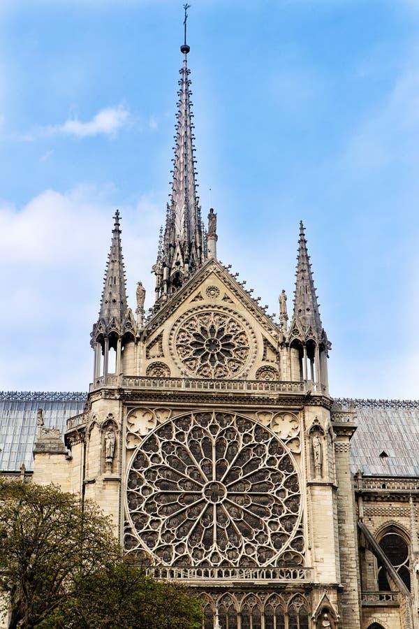 Rosetter från Notre Dame Cathedrale royaltyfria foton