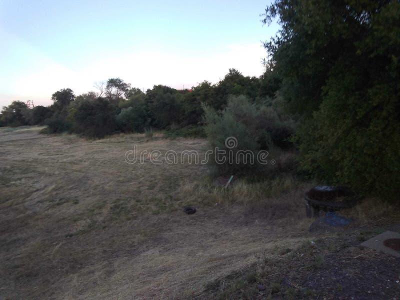 Rosevilles land beskyddar hemlöns arkivfoto