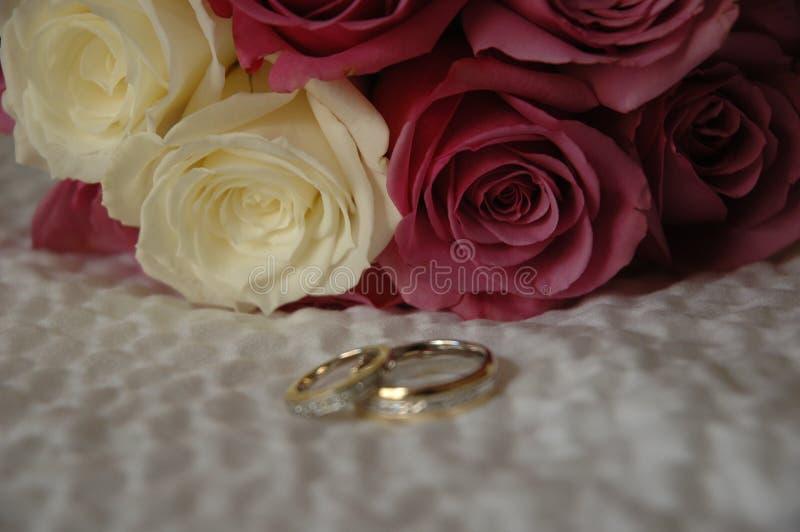 Roseyband stock fotografie
