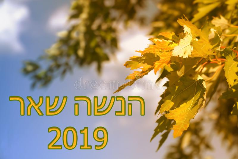Rosh Hashanah Jewish New Year. 2019 year. September. Autumn. Autumn leaves, blue sky on a warm background clip art. Happy New Year stock photography