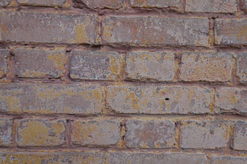 Rosig brun tegelstenvägg med målarfärg royaltyfria bilder