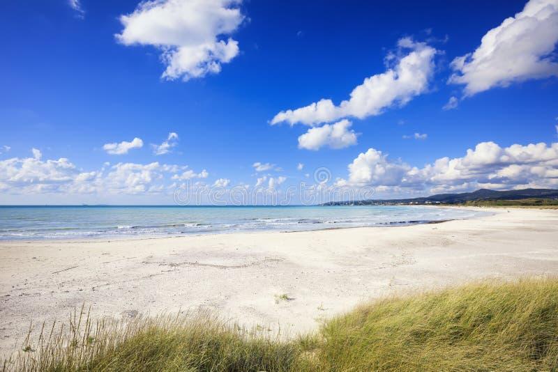 Rosignano Vada vit sandstrand och kust Tuscany, Italien royaltyfri fotografi