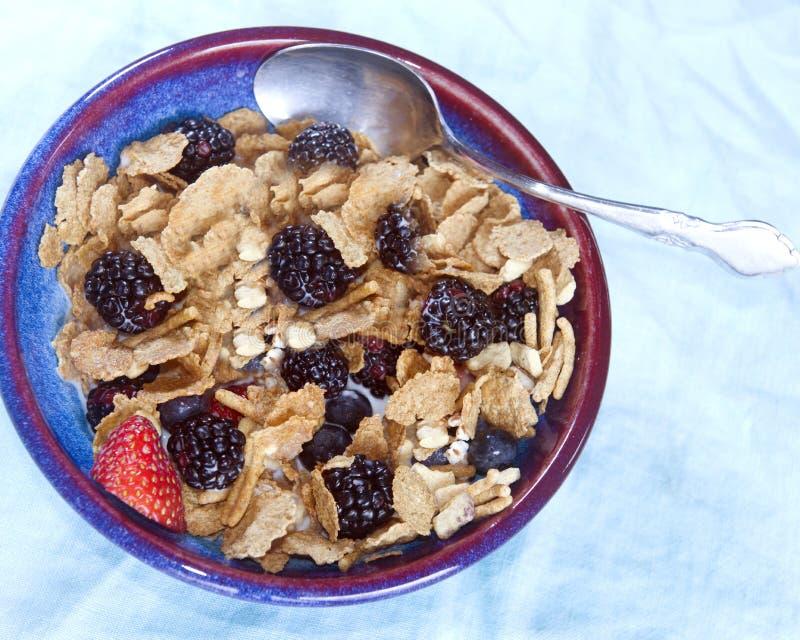 Rosinenkleie-Frühstückskost aus Getreide mit Brombeerblaubeererdbeeren stockfotos