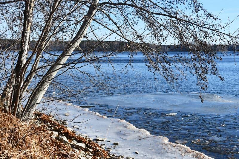 Rosja, Chelyabinsk region, natura zabytek - jeziorny Uvildy Mała sekcja lód blisko brzeg w pogodnym Listopadu dniu zdjęcia stock