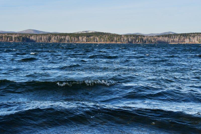 Rosja, Chelyabinsk region Natura zabytek - jeziorny Uvildy w połowie listopadej w chmurnym dniu zdjęcia stock