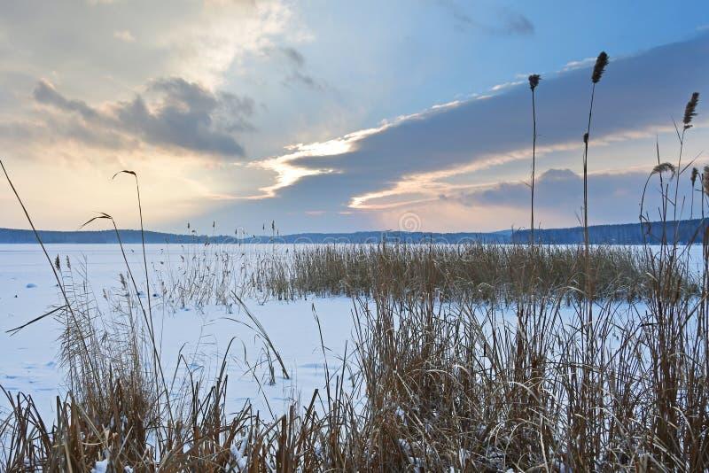 Rosja, Chelyabinsk region Natura zabytek - jeziorny Uvildy w zimie w mroźnym wieczór fotografia royalty free