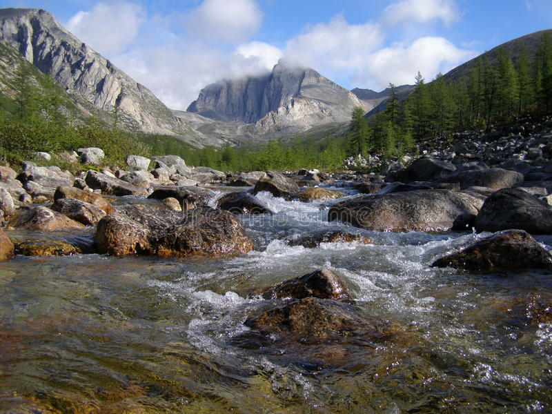 Rosja Syberia Buryatiya Barguzinsky tajga wzgórze świat natura krajobraz zdjęcia royalty free