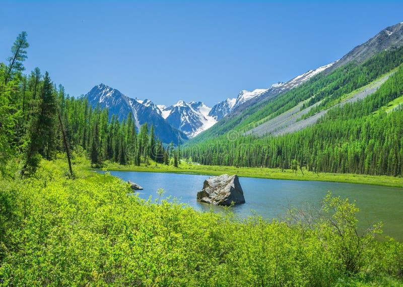 Rosjanina Altai góry krajobraz obraz royalty free