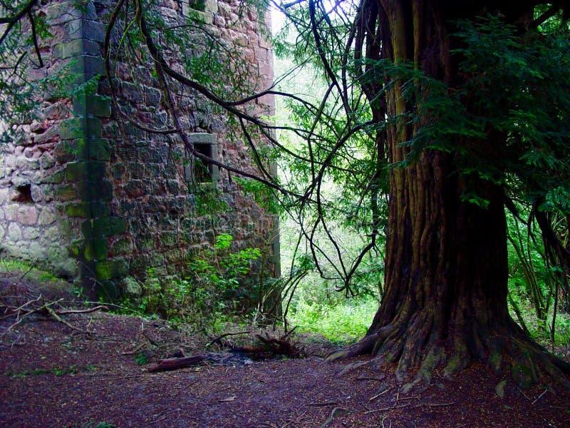 Roslyn Castle arkivfoton
