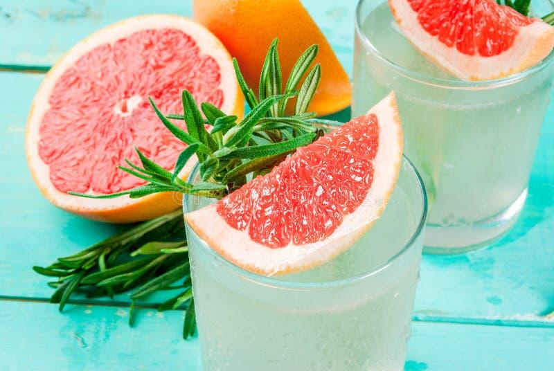Rosmarin, grapefrukt & Gin Cocktail royaltyfri fotografi