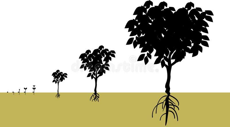 rosnąć ilustracji