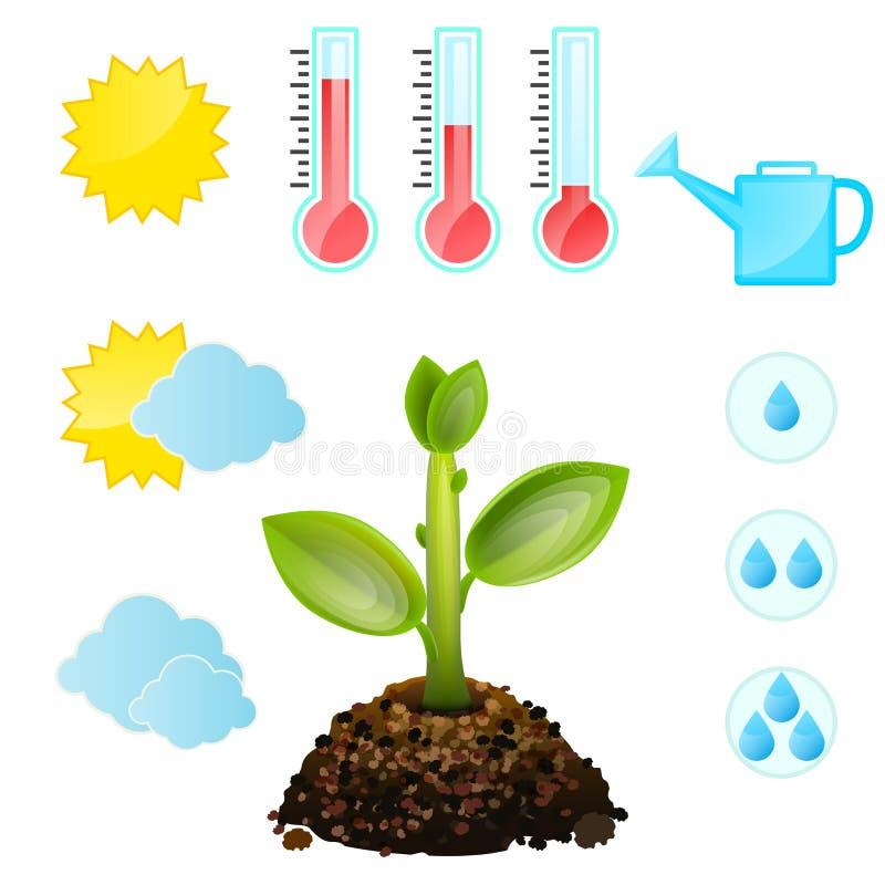 Rosnąć i warunki rośliny, symbolu set royalty ilustracja