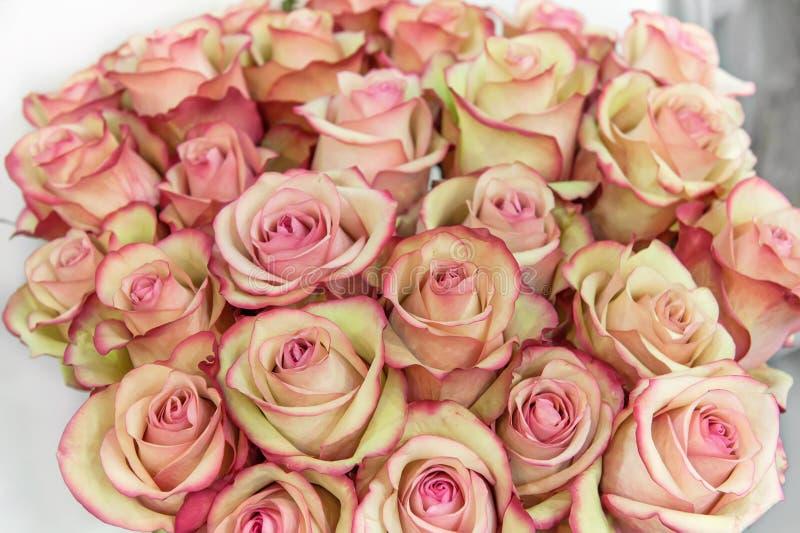 Rosor av rosa färger och gröna moderna variationer i en bukett för en gåva Bakgrund arkivbilder