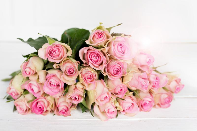 Rosor för moderdag royaltyfria foton