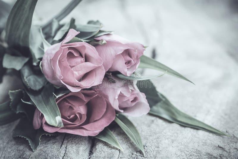 Rosor i tappningstil royaltyfria foton