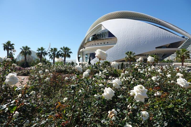 Rosor på operahuset på staden av konster och vetenskaper i Valencia, Spanien arkivfoton