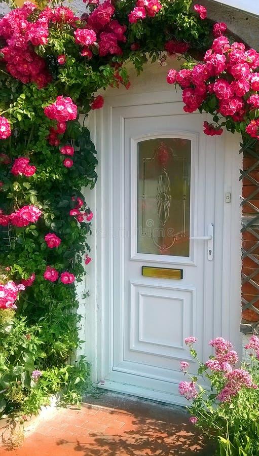 Rosor runt om dörren royaltyfria foton