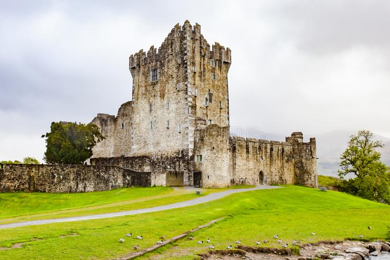 Ross Castle, Ierland royalty-vrije stock foto