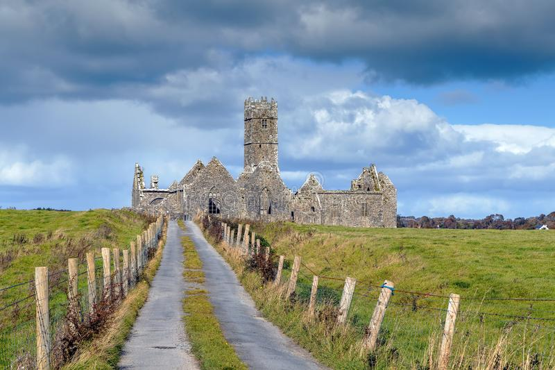 Ross Errilly Friary Irland royaltyfria bilder