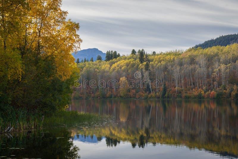 Ross Lake na queda fotos de stock royalty free