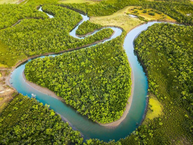 Ross River serpentant par les palétuviers image stock