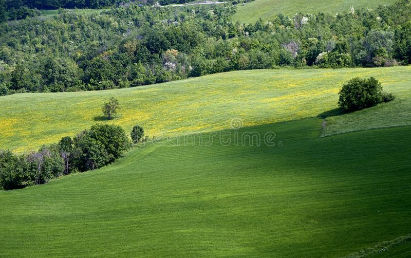 Apennines. Rossena Re, italy, a landscape with meadows of Apennines stock photos