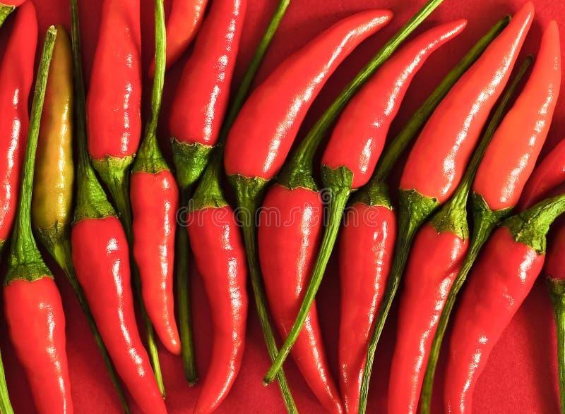 Rosso, caldo e lucido immagini stock
