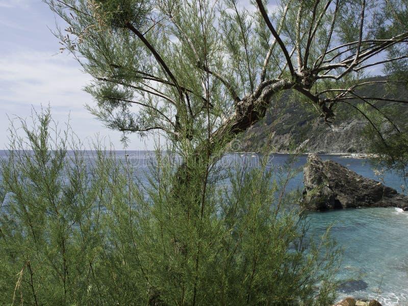 Download Rosso de Monte photo stock. Image du plage, méditerranéen - 56480118