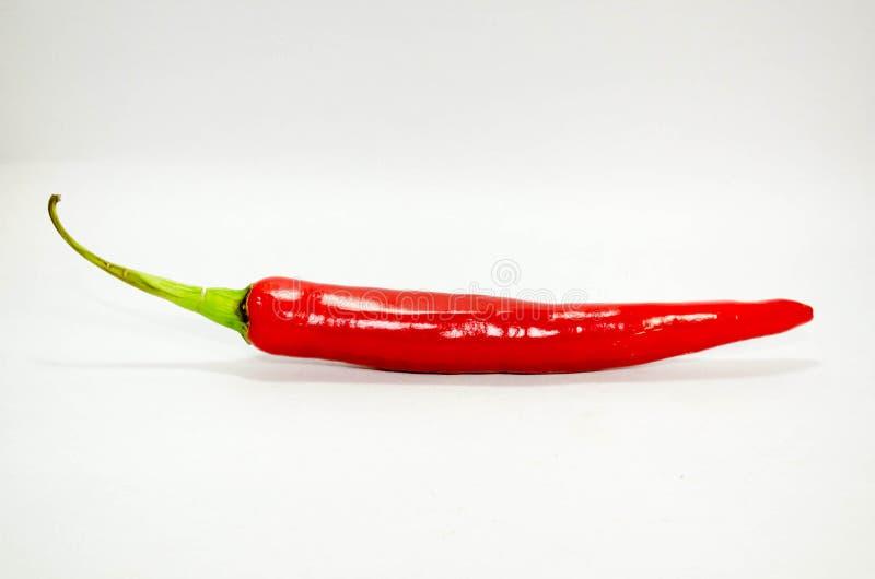 Rosso del peperoncino rosso fotografia stock libera da diritti
