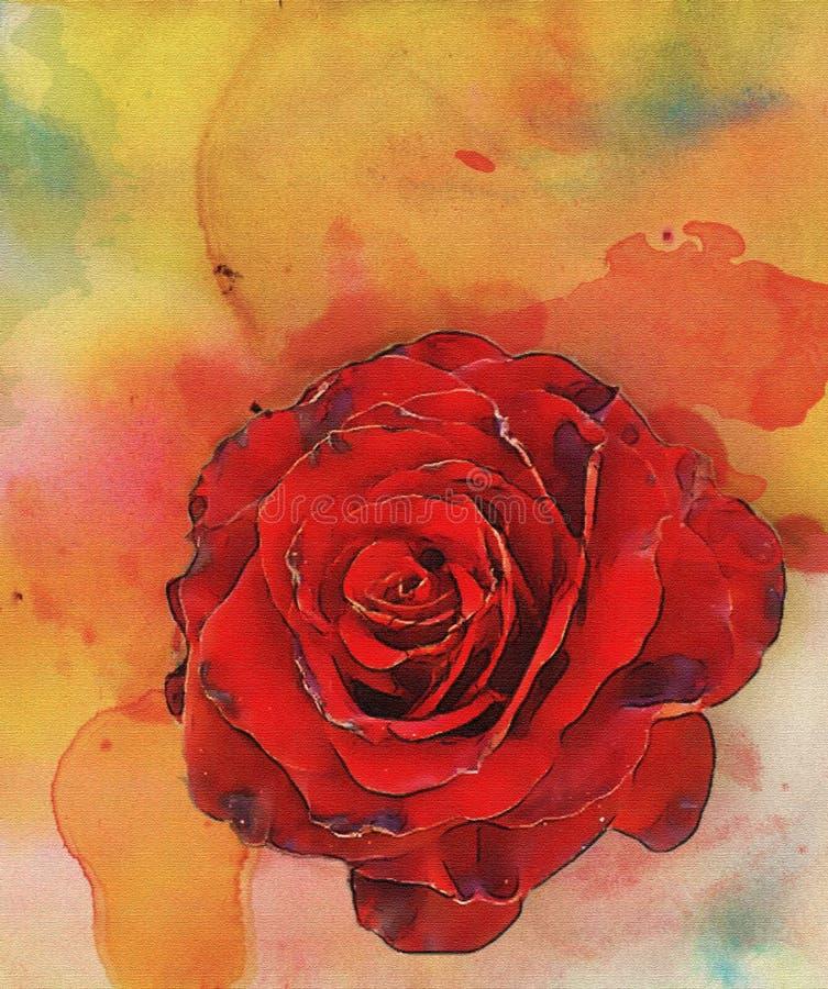 Rosso 2 delle rose dell'acquerello illustrazione di stock