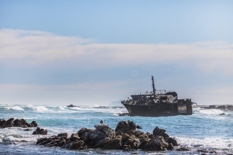 Rostad gammal skeppsbrott på en ojämn stenig kustlinje med havsfiskmåsar i bakgrunden fotografering för bildbyråer