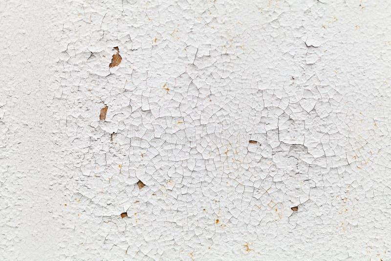 Rostad vägg för vit metall med sprickor, bakgrundstextur royaltyfri fotografi