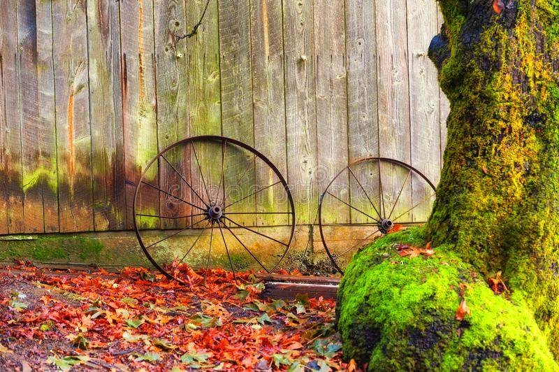 Rostade hjul lutar mot en ladugård bland höstsidor arkivfoton