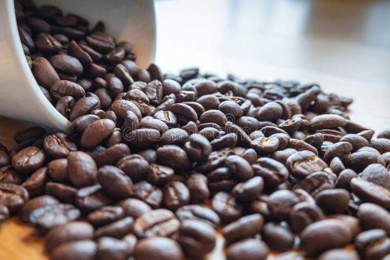 Rostade kaffebönor spill från koppen, redo att ge färskhet och tillsammans med affärsmän royaltyfria foton