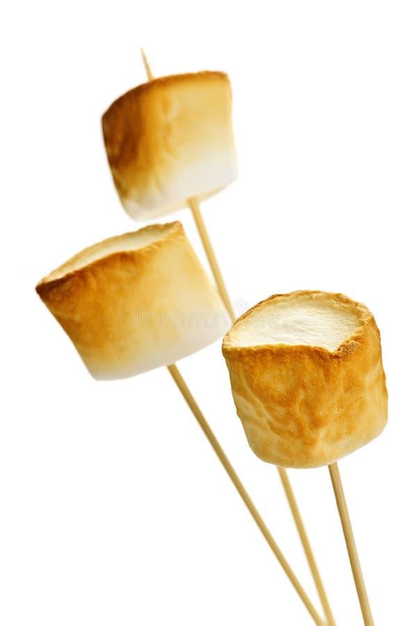 rostade marshmallows arkivbild