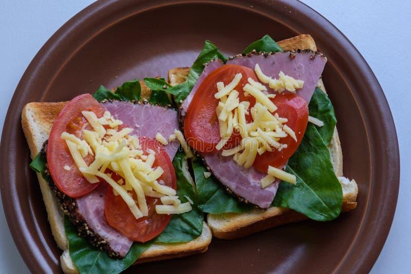 Rostat bröd med grillad kött-, tomat-, syra- och mozzarellaost arkivbild