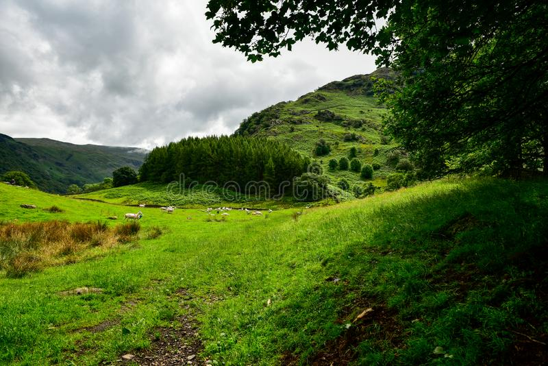 Rosthwaite Cumbria alrededor foto de archivo