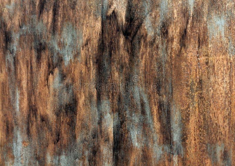 Rostig metallväggsyrface med målarfärgstrockes royaltyfri fotografi
