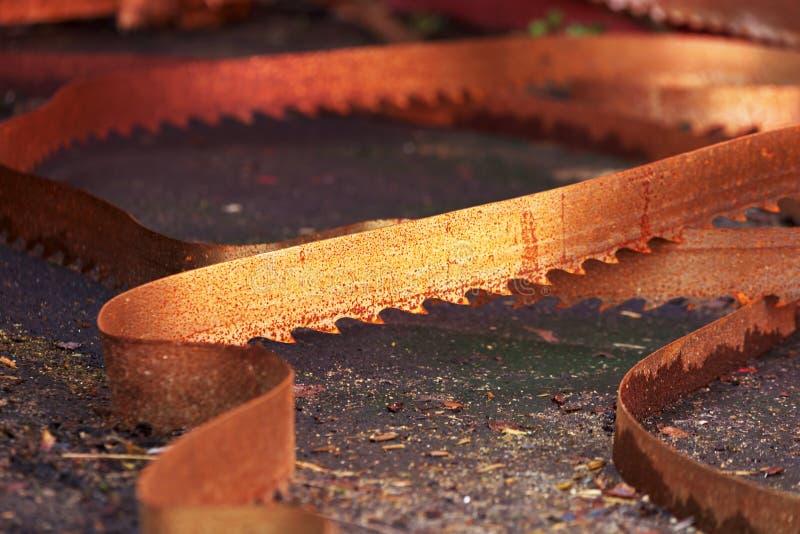 rostig saw för blad royaltyfri fotografi
