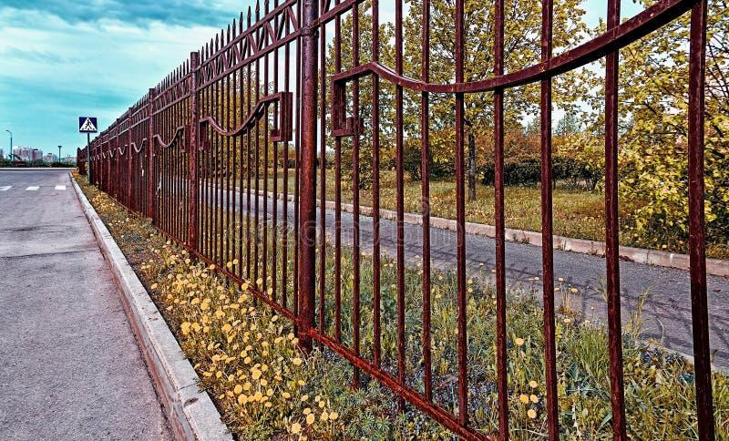Rostiga staket åt sidan asfalterar vägen med gula maskrosor och grönt gräs som leder till det avlägsna blåa tecknet av det fot- k royaltyfri foto