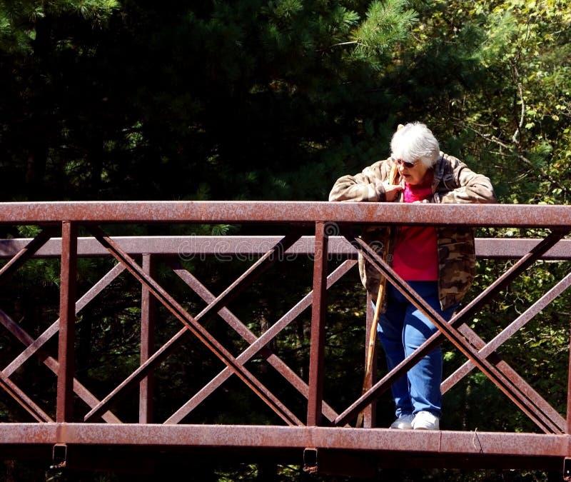 Rostige Brücke lizenzfreie stockfotografie