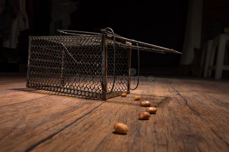 Rostiger Rattenkäfig lizenzfreies stockfoto
