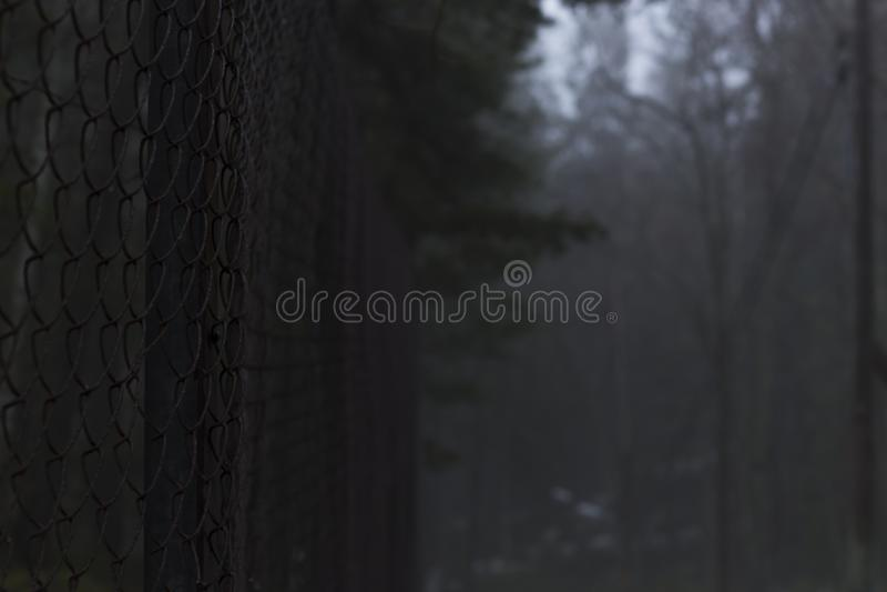 Rostiger Zaun mitten in einem schwedischen Wald an einem nebelhaften Tag lizenzfreies stockfoto