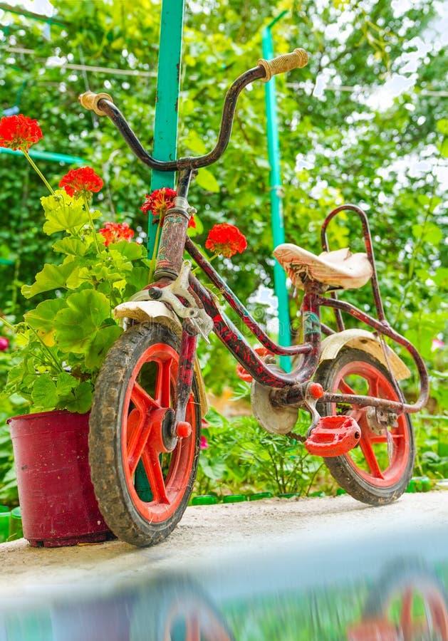 Rostiges Kinderfahrrad in einem Garten mit roten Blumen gerade nahe dem Wasser lizenzfreies stockbild