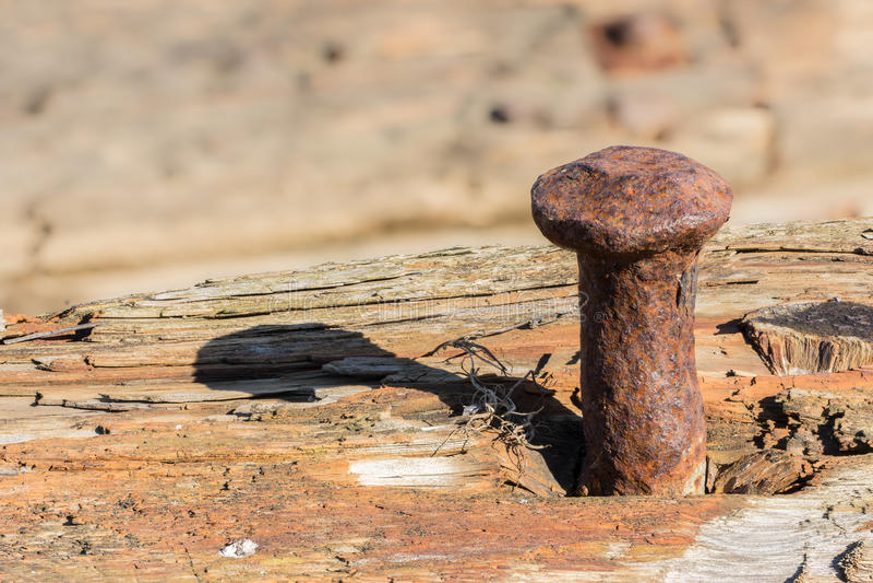 Rostigt spika i ruttet trä royaltyfria foton