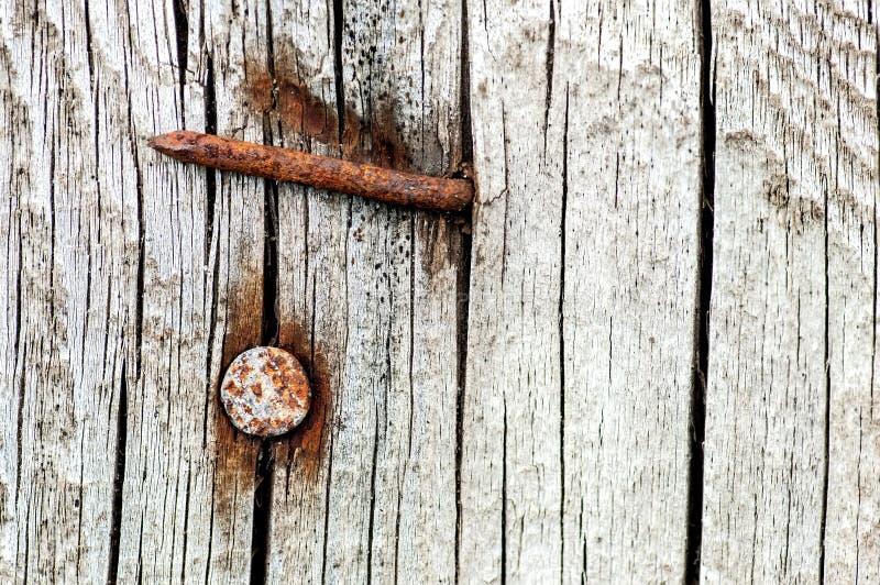 Rostigt spikar i ett gammalt sprucket trä fotografering för bildbyråer
